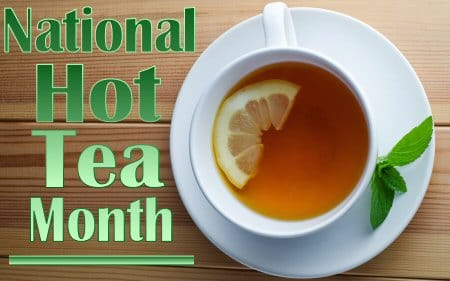 Stash Hot Tea Month Giveaway ~ Ends 1/31 ~ A Wandering Vine