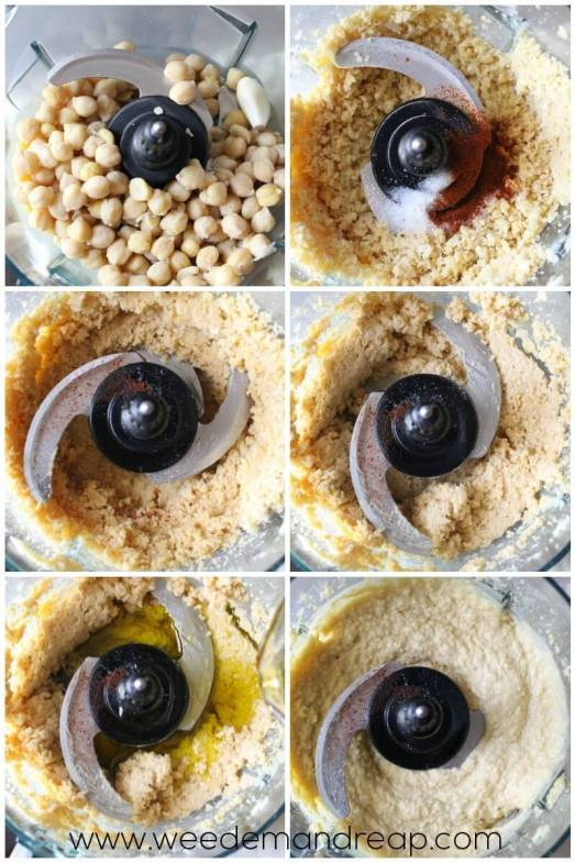 sprouted-hummus-recipe-2