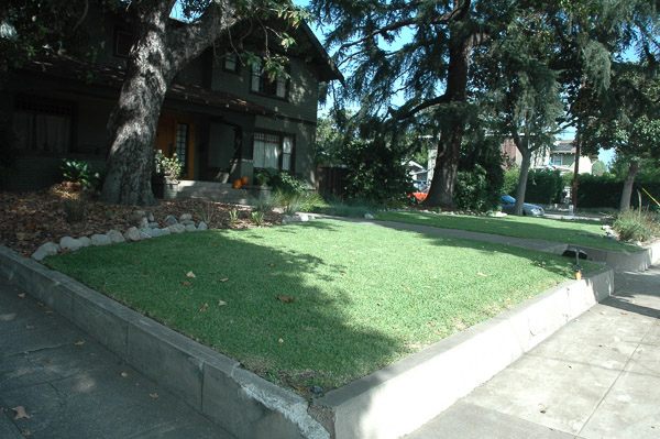 Front yard with lawn