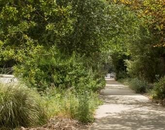 Parkway garden