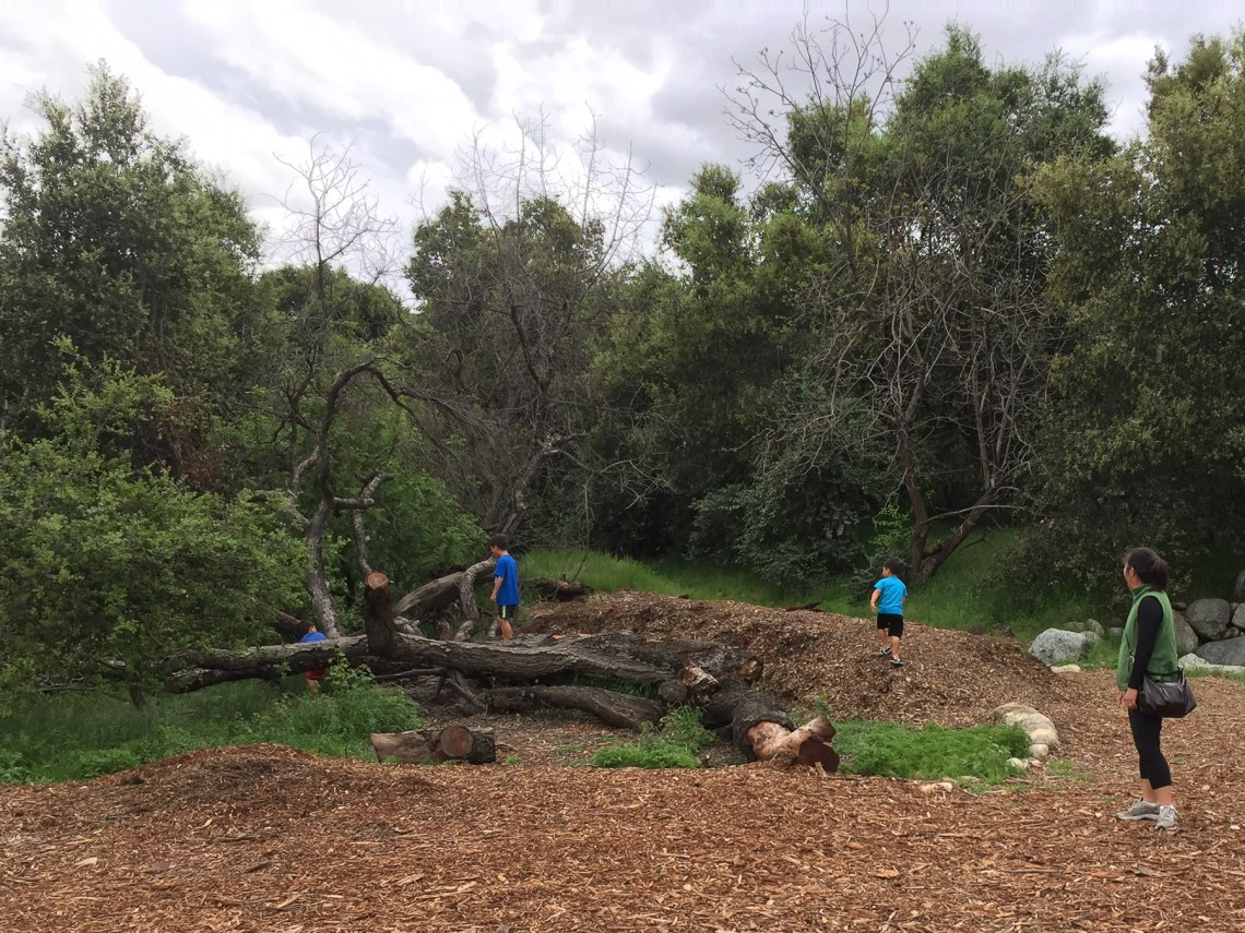 Kids climb in park