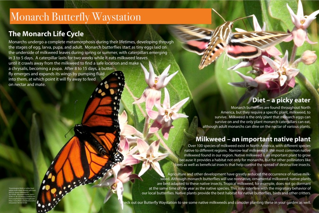 Monarch Waystation Poster