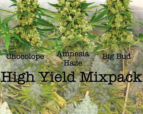 High Yield Mixed Pack
