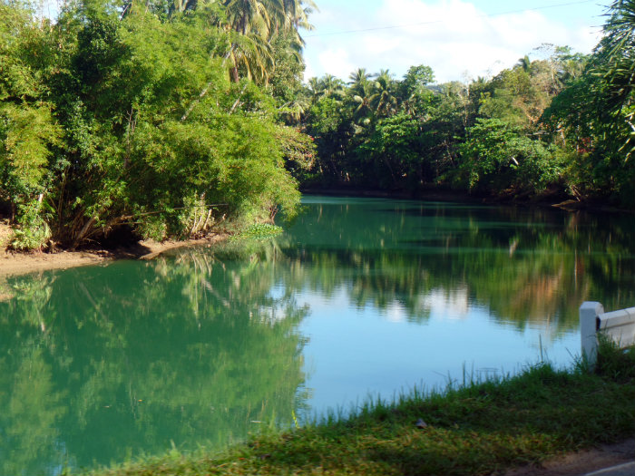 Loboc River- Imagine waking up to this everyday!