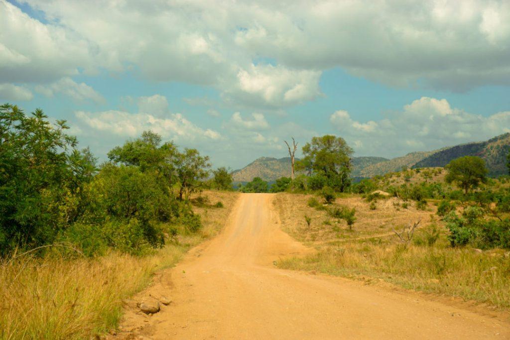 Safari Kruger National Park South Africa Budget Independent Self Drive
