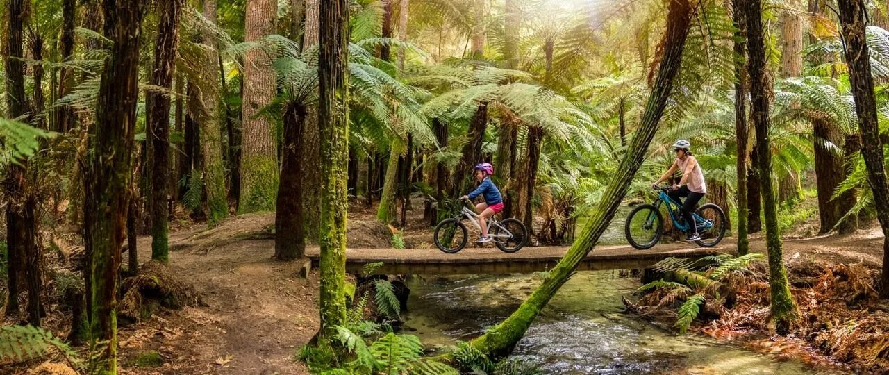 Mountain biking family crossing a bridge at the Redwoods Forest in Rotorua New Zealand