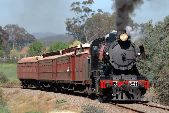 Steam Trains For Kids Melbourne