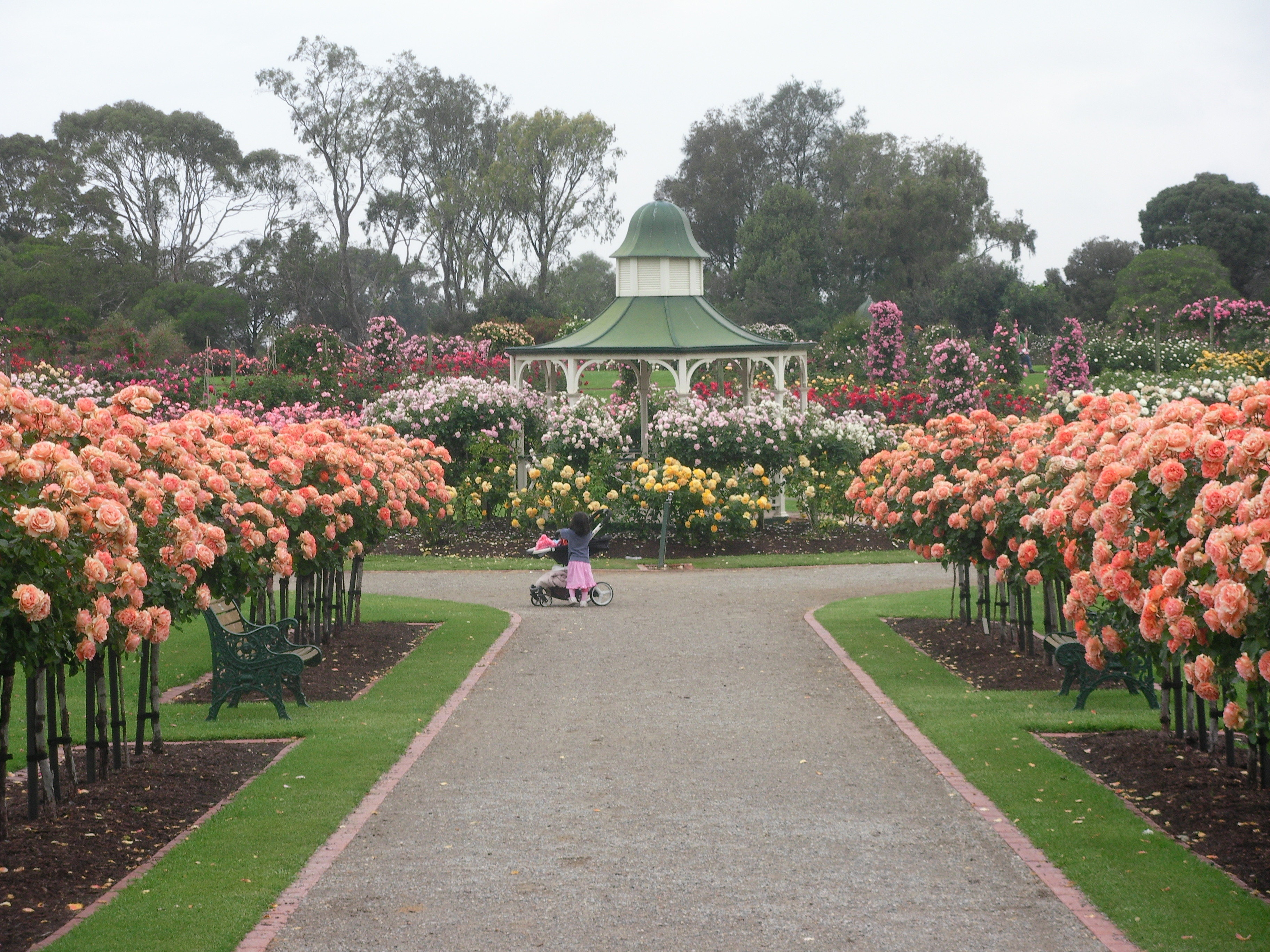 State Rose and Garden Show  Melbourne