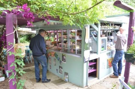 Jane's enchanted tea garden
