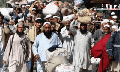 Tablighi Jamaat, Zakir Naik, Britain, Muslim, Indian