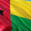 Guinea-Bissau, Ditadura de Consenso, António Aly Silva, Umaro Sissoco Embaló