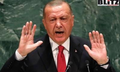 Recep Tayyip Erdoğan, Jovan Vukotic, Serbia, Sedat Peker
