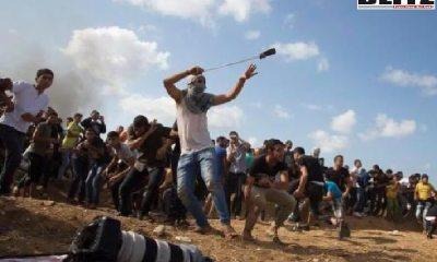 ISIS founder Abu Bakr al Baghdadi, ISIS, Ammunition Hill in Jerusalem, Palestinian ISIS