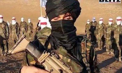 Al Qaeda, Syria, Afghanistan, CNN, Taliban