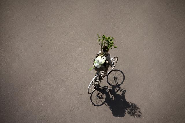 Le vélo urbain sur la toile n°179