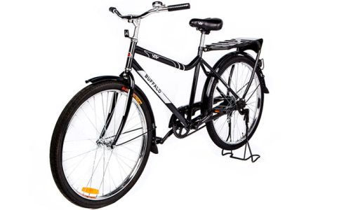 Weelz WBR Buffalo Bike (3)