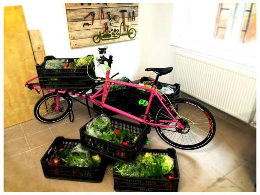 Cargonomia, un projet hongrois qui distribue de la nourriture locale et bio en vélo cargo