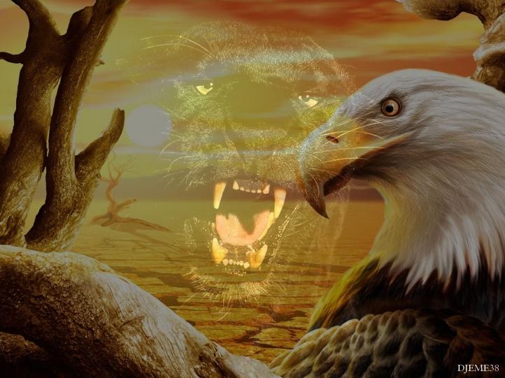 Animal Photo Wallpaper Fond D 233 Cran Gratuit Panthere Noire 005 Fonds D 233 Cran