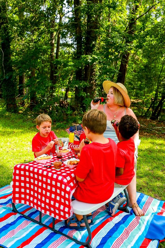 Americana themed backyard picnic