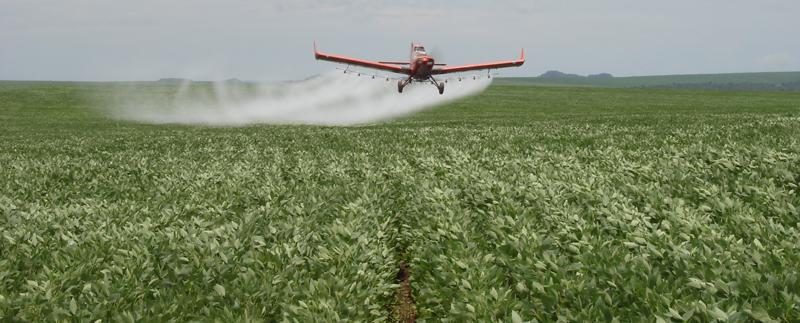 Znalezione obrazy dla zapytania pestycydy