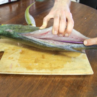 Slicing the omilu