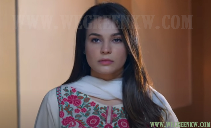 Ishq Hai Episode 35 and 36