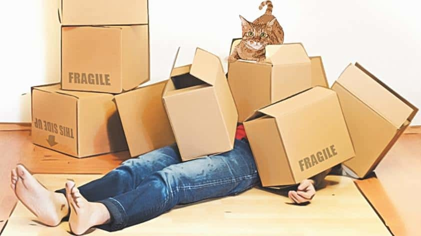Packing Tips @WeHaulMovers
