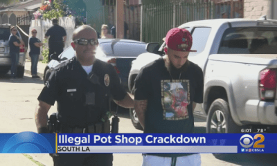 LAPD, City Of LA Vow To Crackdown On Illegal Pot Shops