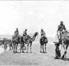 Camels, Confederates and Other Stories from West Hollywood's Civil War History