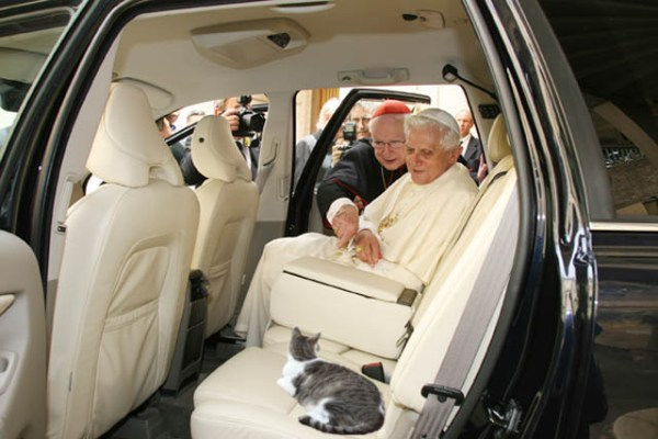 Famous Pope With Cat