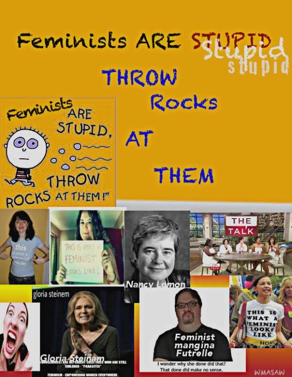 feminists-are-stupid