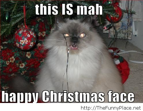 Grumpy-cat-face-on-Christmas