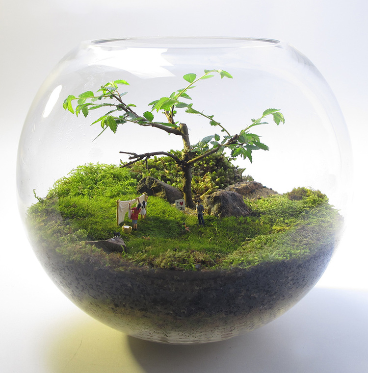 Do we live in a giant terrarium?