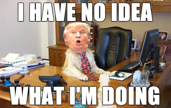 noideeadogtrump600 600x380 2?fit=600%2C380&resize=350%2C200 trump meme of the day you're mired! we hunted the mammoth
