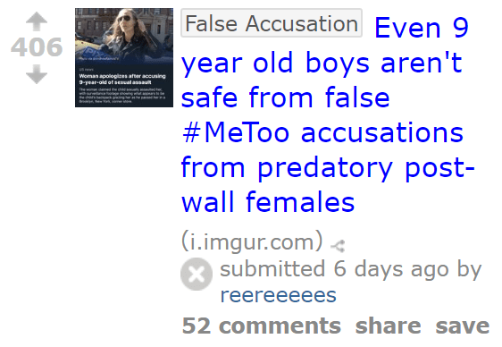 406 False AccusationEven 9 year old boys aren't safe from false #MeToo accusations from predatory post-wall females