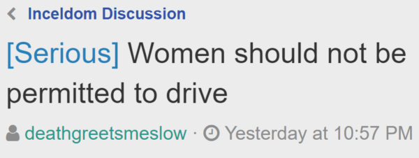[Serious] Women should not be permitted to drive