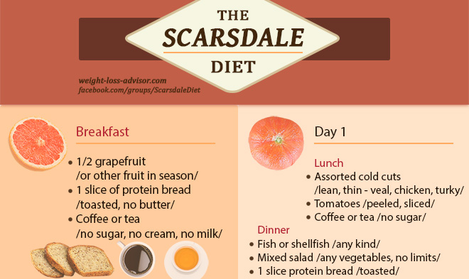 Scarsdale Diet Infographic - Day 1 to Day 7 - Weight Loss ...