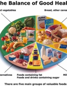 Well balanced meal chart also weight gain diet for  natural thin person rh on