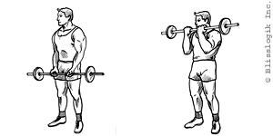 Exercises: Bicep Exercises