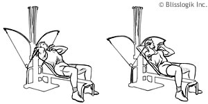 Exercise Routines: Bowflex Xtl Exercise Routines