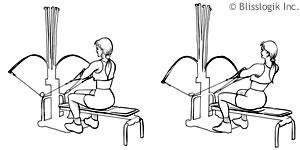Bowflex Tricep Workouts