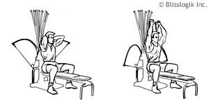 Back Exercises: Bowflex Xtreme Back Exercises