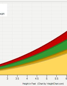 also adult height weight chart rh weightchart