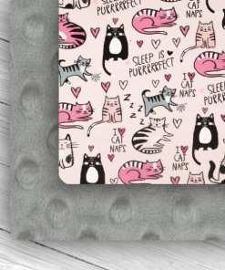 Cat Nap & Silver Minky Combo
