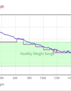 Cinnamon   weight loss graph also how long does it take to lose resources rh weightlossresources