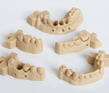 3D Printed Models