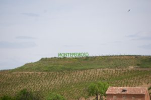 Die Finca Montepedroso liegt auf 750 Metern Höhe. Sie existiert erst seit 2012 und zählt mit einer Anbaufläche von 25 Hektar eher zu den kleinen Produzenten der Gegend.