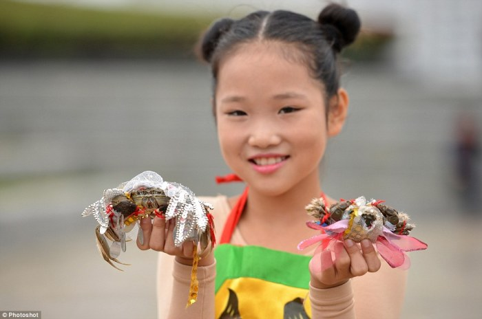 hongze lake harvest festival crab fashion show