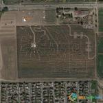 Crazed Corn Field Maze, Denver, Colorado, USA