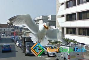 Seagull Attack, Brighton, England, United Kingdom